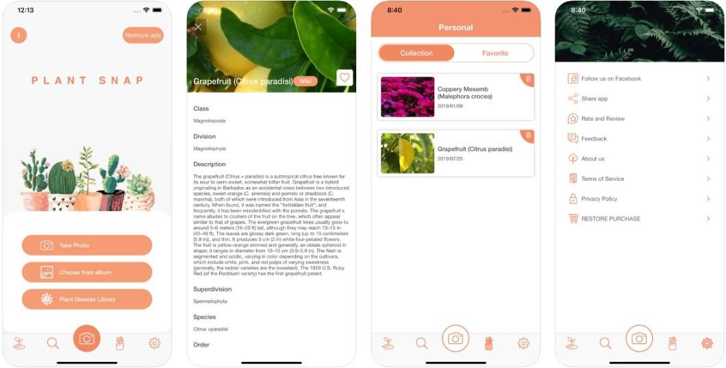 App de detección de plantas.
