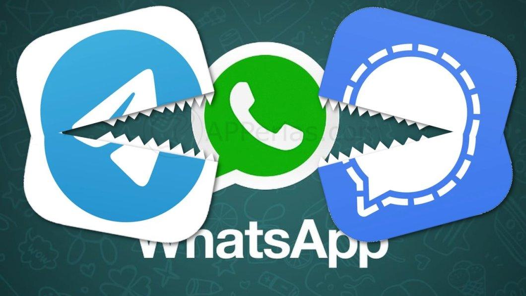 Signal y Telegram VS. WhatsApp