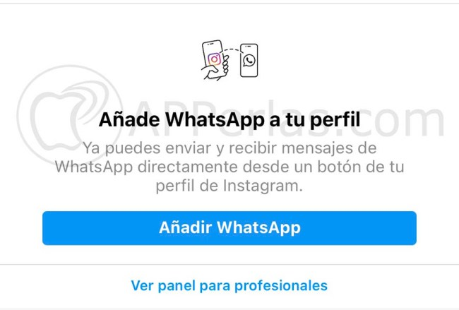 conectar instagram y whatsapp boton perfil 1