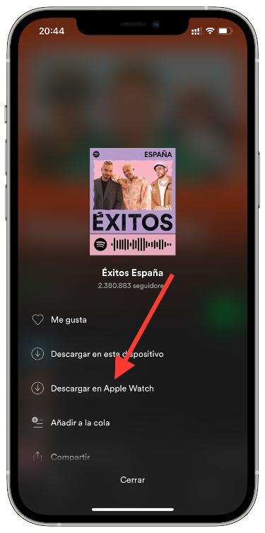 descargar música de Spotify 2