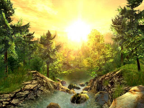 de nieuwe aarde