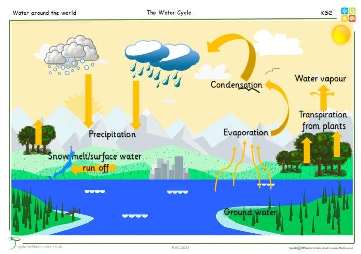 water cycle diagram apple