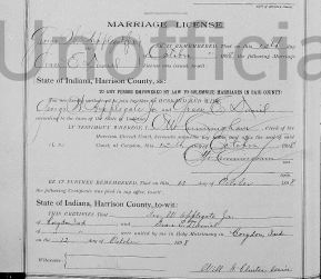 Grace Daniel and George William Applegate marriage license 10131898