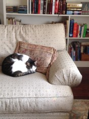 And Henry finally has his favorite chair back.