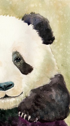Download All Cute Wallpaper 11 Cute Panda Wallpapers For Iphone With 1920x1080