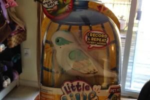 Little Live Pets Review
