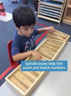 apple-montessori-kids-learning