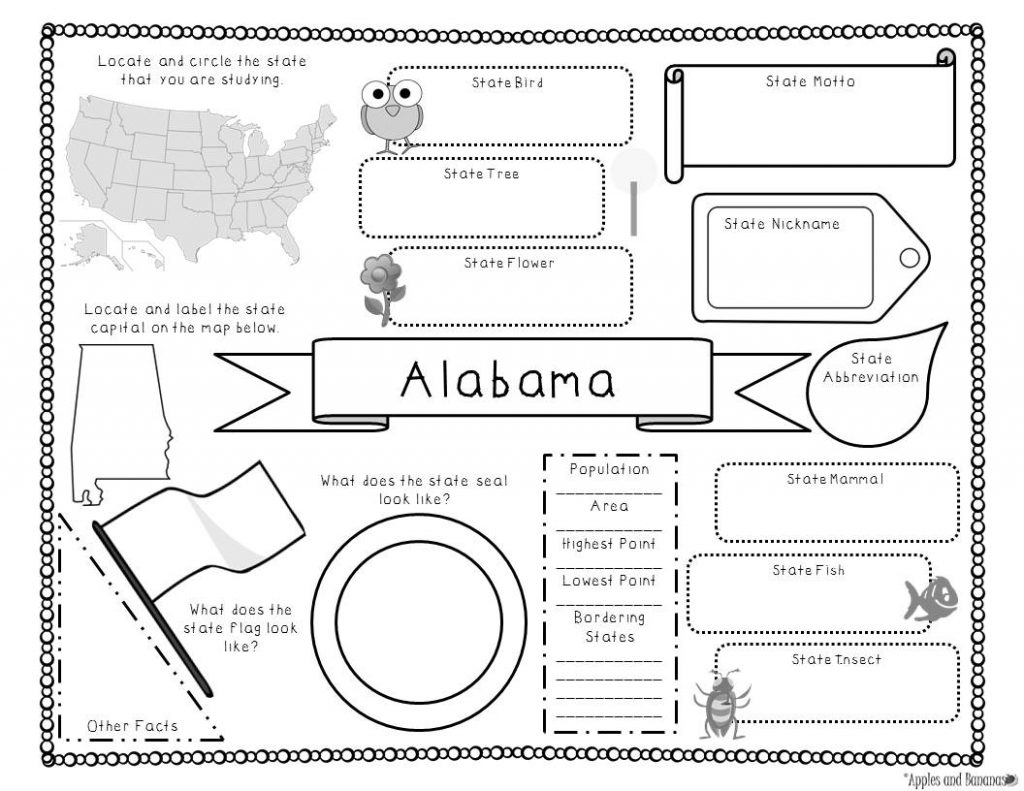 50 States Research Activity