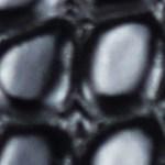 12173-Black