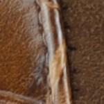 13396-Camel