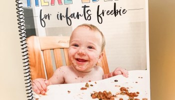 Free meal ideas for infants