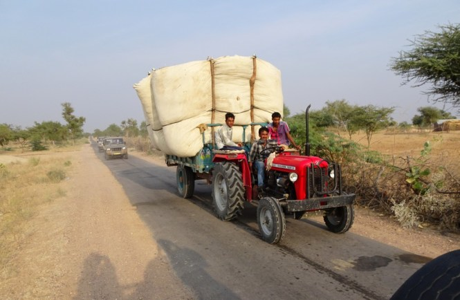 getreidetransport jodhpur