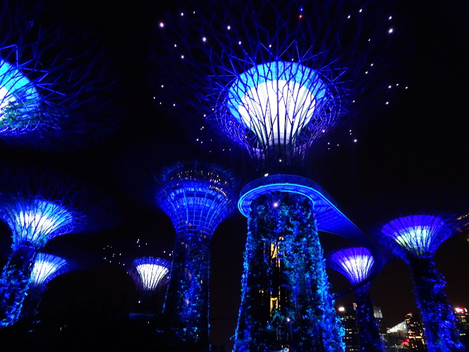supertree grove at night singapur travelguide