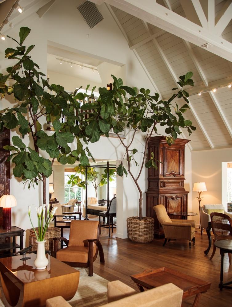 Rose Tarlow Furniture : tarlow, furniture, Tarlow, Melrose, House, Appleton, Partners