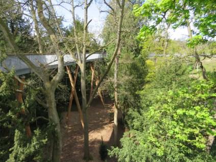 Walkway at Westonbirt Arboretum