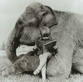 elephant-and-child