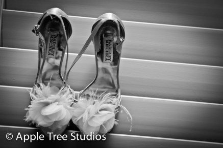 Apple Tree Studios (Broomal Wedding)74