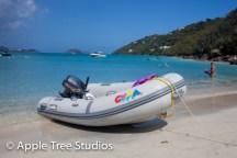 Apple Tree Studios Sail Mag04