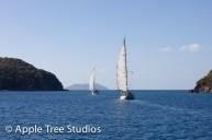 Apple Tree Studios Sail Mag07