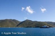 Apple Tree Studios Sail Mag08