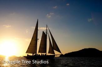 Apple Tree Studios Sail Mag18