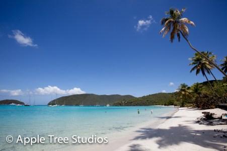 Apple Tree Studios Sail Mag39