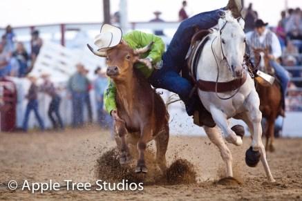 Apple Tree Studios Sport05