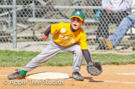 Apple Tree Studios Sport27