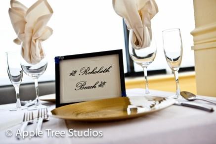 Salero Rehoboth Wedding-5