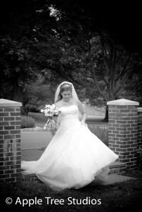 Media PA Wedding-17