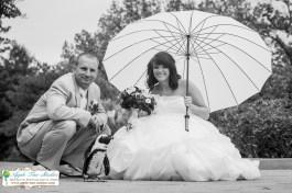 Apple Tree Studios Chicago Wedding Photographer-13