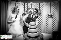 Apple Tree Studios Chicago Wedding Photographer-18