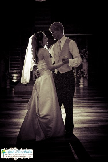 Apple Tree Studios Chicago Wedding Photographer-83