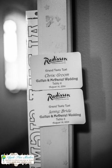 Radisson Hotel Merrillville Wedding04