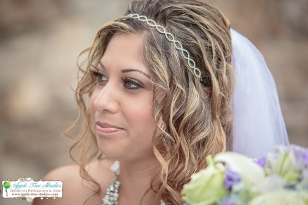 Radisson Hotel Merrillville Wedding16