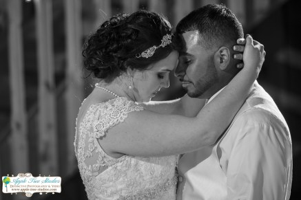 County Line Orchard Wedding Hobart Indiana Photographer Apple Tree Studios Munster IN