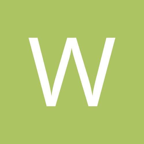 wapitiscat