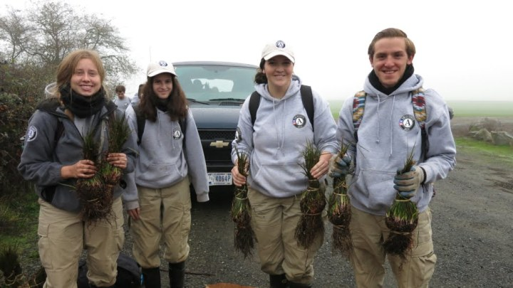 AmeriCorps NCCC Team Gold 5 members holding bundles of Oregon iris (Iris tenax).  Bulbs and bareroot plants of several other native species were also planted.