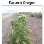 eastern oregon guide cover