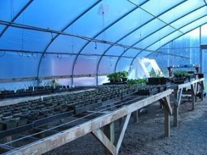 Oak Creek Youth Correctional Facility greenhouse.