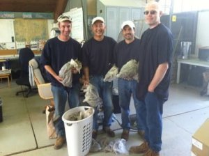 Adults in custody showing their harvest of Kincaid's lupine seeds.