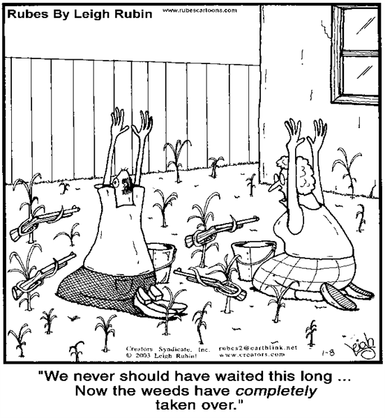Importance of Dealing with Invasive Plant Species Cartoon