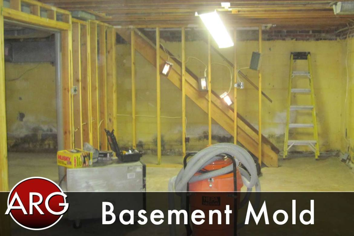 Basement Mold Northern Virginia