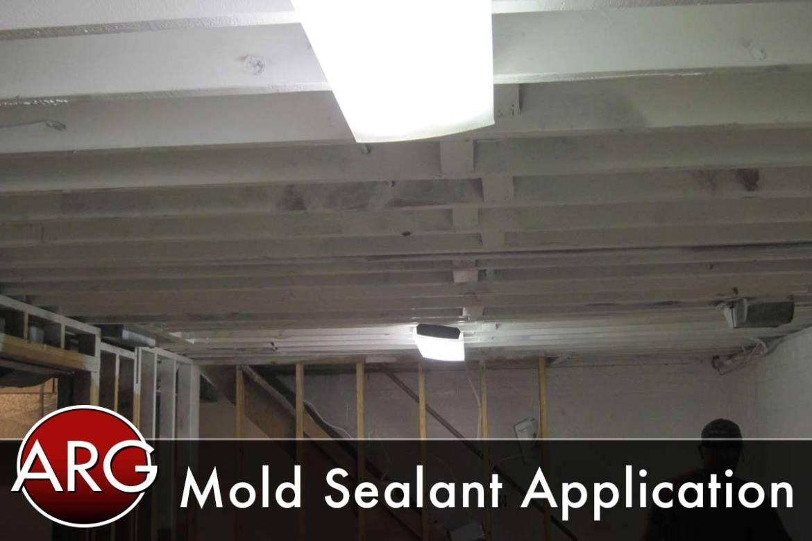 Mold Sealant Application After