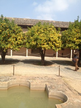 Another Alhambra courtyard