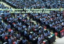 169 Nigerian Winners Tony Elumelu Foundation 2018