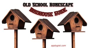 OSRS – What You Need to Know About Birdhouses
