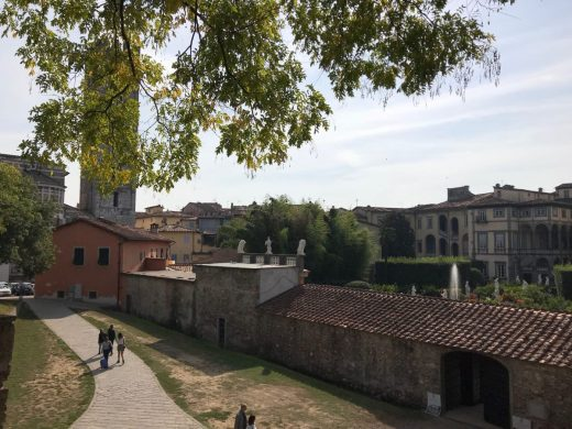 Lucca scene from wall