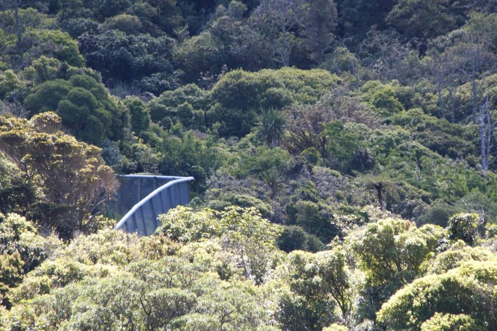 Welington New Zealand Zeelandia Fence