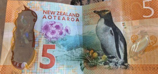 New Zealand Five Dollar Note